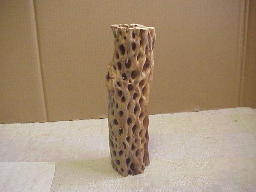 他の写真2: 天然サボテンの骨(棒状) 極太30cm