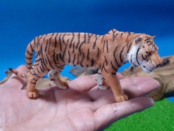 画像5: トラ(Papo社製)