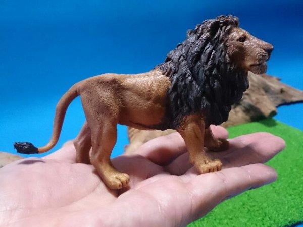 画像5: ライオン(Papo社製)