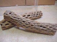 天然サボテンの骨(棒状) 太30cm
