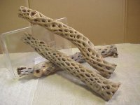 天然サボテンの骨(棒状) 太50cm