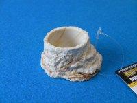 レプティボウル2 ミニ(直径6.5×高さ3cm)