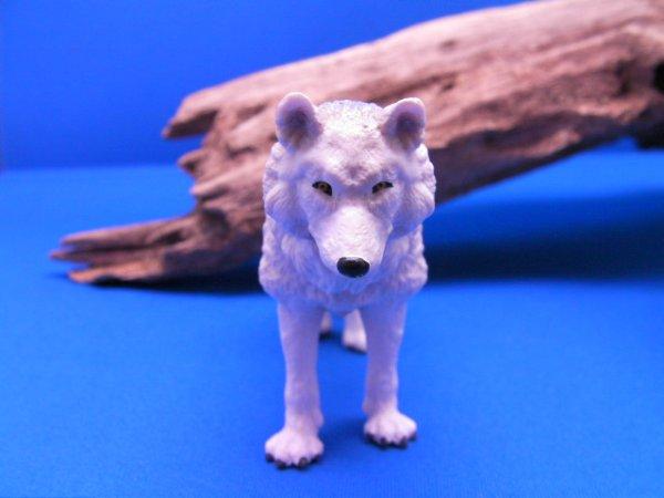 画像3: 北極オオカミ (Papo社製)