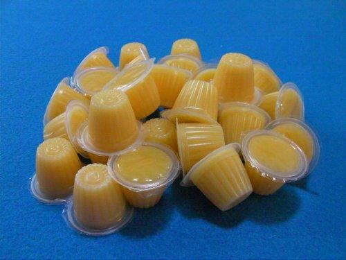 他の写真1:  (栄養補給に♪) リクガメ、雑食トカゲ、ヤモリ用ゼリー 30個入り